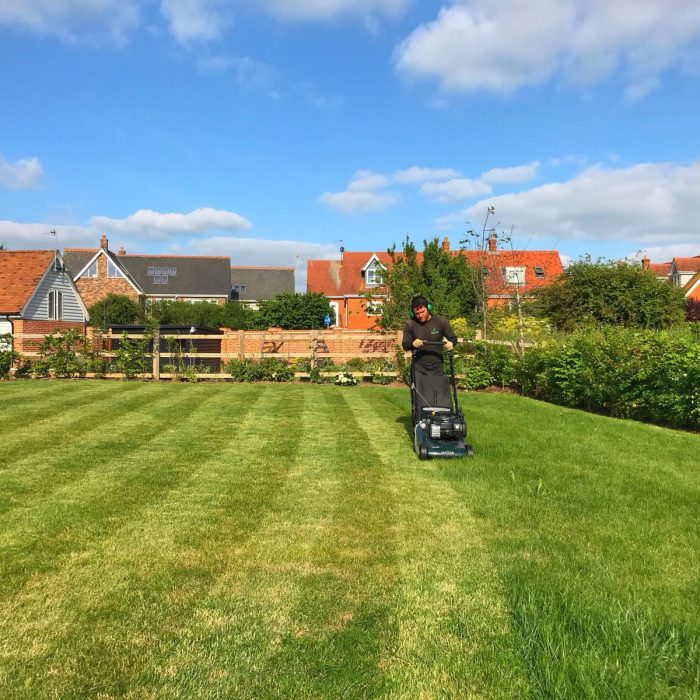 REGULAR GRASS CUTTING