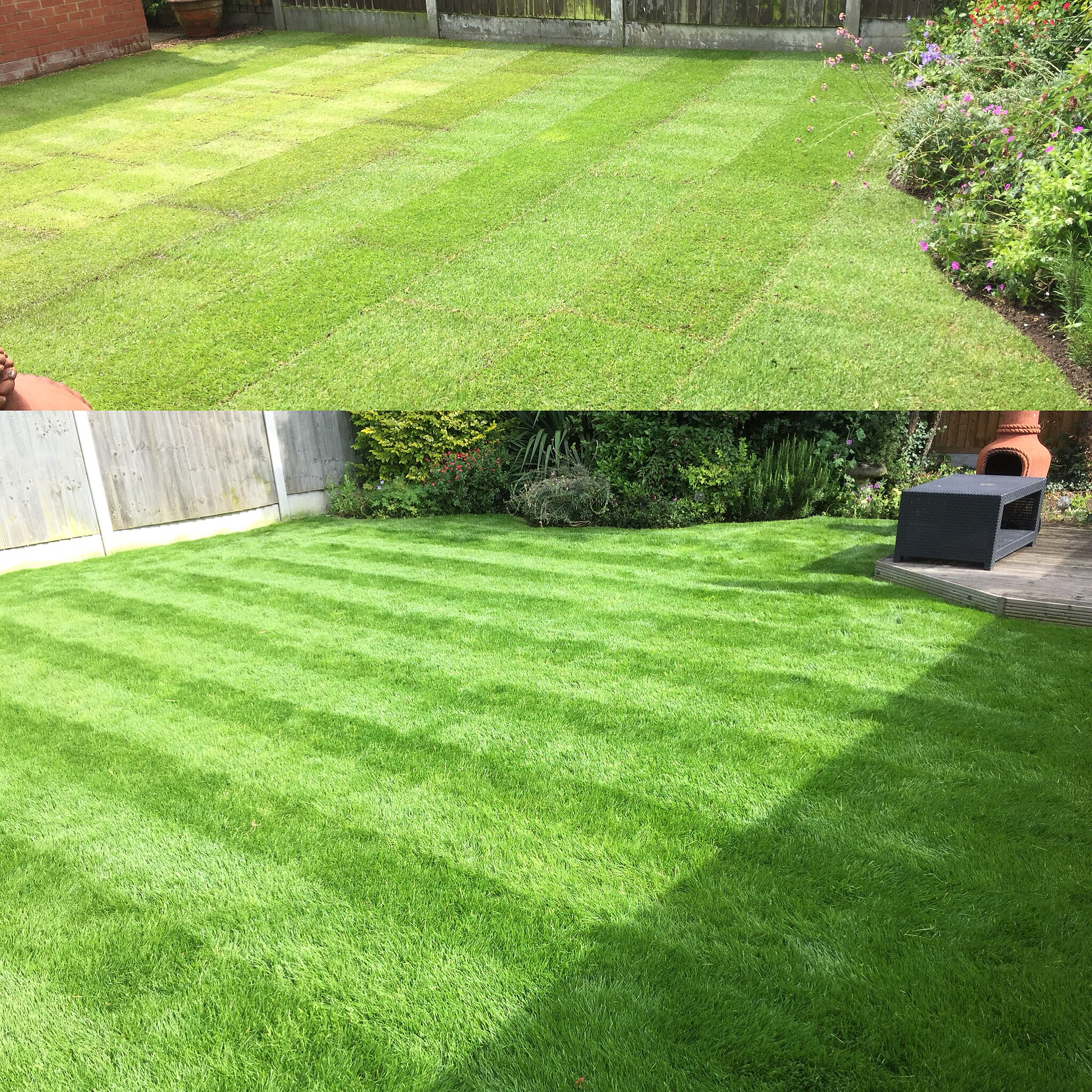 TURFING AND LAWN TREATMENT